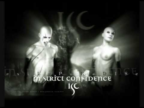 in strict confidence - lost in the night
