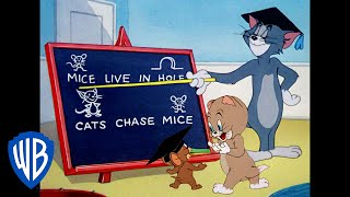 Tom & Jerry | Lesson Learned! | Classic Cartoon Compilation