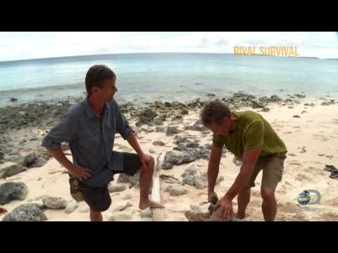 RivalSurvival clip from the Discovery Channel