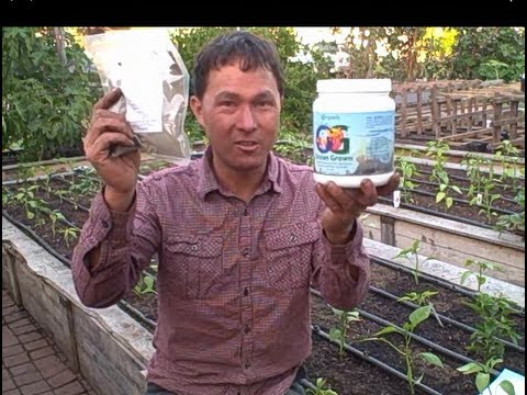 Amino Acid Organic Fertilizer Increases Yields and Will Not Burn Plants