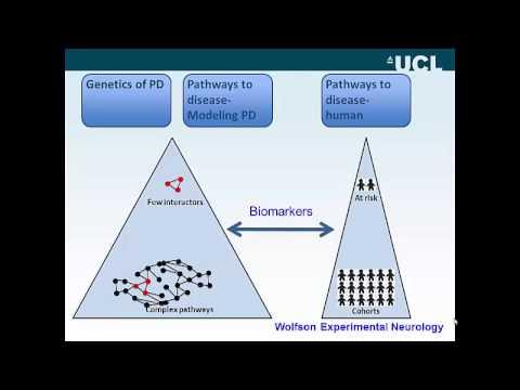 Advances in Genetic Understanding of Parkinson's Disease ...