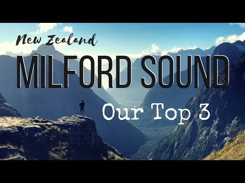 #7 NZ: Milford Sound and kayaking w/ wild dolphins!