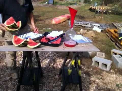 Making Watermelon Wine!