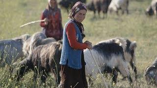 Assignment Asia: Turkey's last Anatolian nomads
