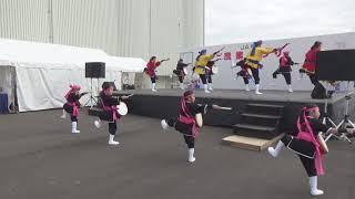 2019/02/02 『 年中口説 』 by 琉球國祭り太鼓 柳川支部 in JA柳川農業...