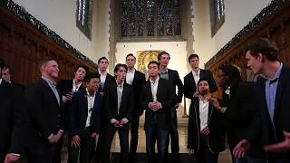 All of the Above (A Cappella) - The Trinity College Accidentals