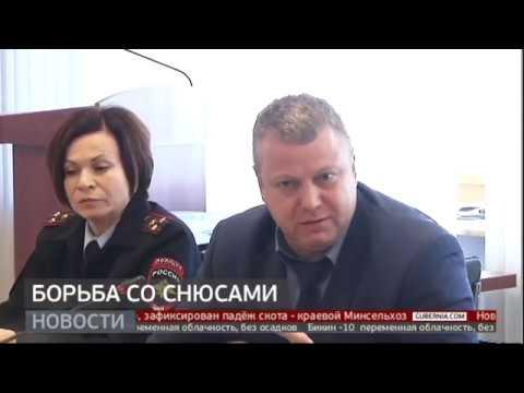 Борьба со снюсами. Новости. 24/01/2020. GuberniaTV