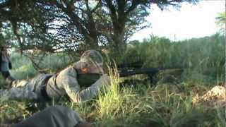 Red Stag and Fallow deer hunt in La Pampa, Argentina