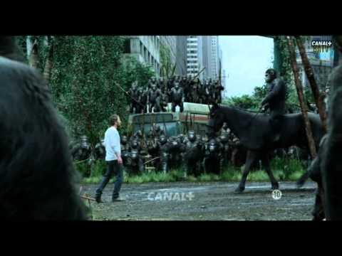 La Planète des Singes: L'Affrontement - Canal +