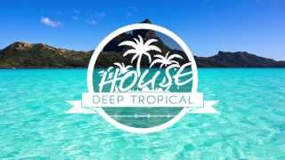 Thomas Jack Presents: Felix Jaehn - Tropical House Vol.8 2015