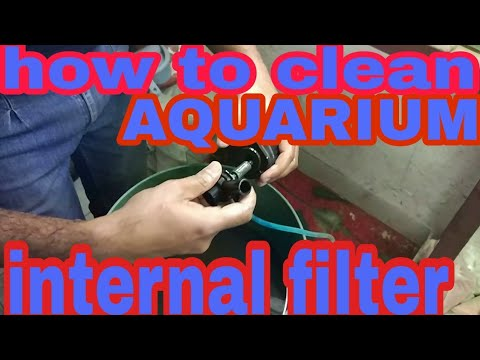 how to clean aquarium internal filter