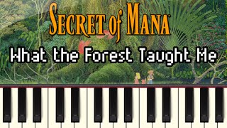 What the Forest Taught Me - Secret of Mana [Synthesia]