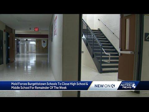 Mold shuts down Burgettstown Area Middle/High School