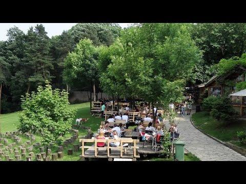 Kosutnjak park-forest - Belgrade, Serbia (Full HD)