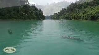 Khao Sok - Khao Sok National Park