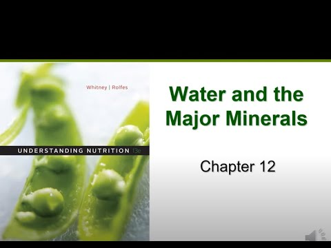 Water and the Major Minerals (Chapter 12)