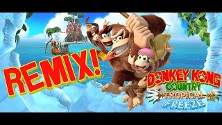 Donkey Kong Country Tropical Freeze Wing Ding REMIX!