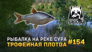 Рыбалка на реке Сура Трофейная плотва Русская Рыбалка 4 154
