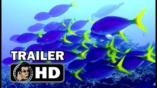 CHASING CORAL Official Trailer (HD) Netflix Original Documentary