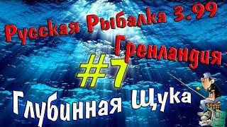 Русская рыбалка 3.99 7 Ловим глубинную щуку.