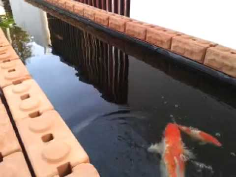 บ่อปลาอิฐประสานหน้าบ้าน ง่ายๆ