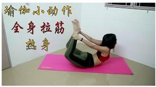 瑜伽#15 瑜伽小动作让你全身拉筋热身运动【初级入门拉伸瑜伽】