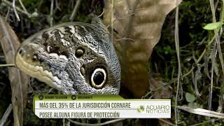 Más del 35% de la jurisdicción Cornare posee alguna figura de protección