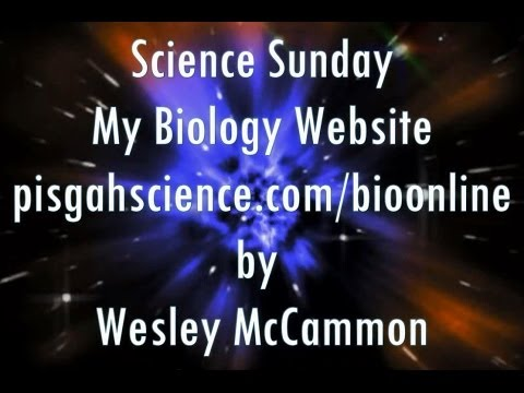 My Biology Website - Science Sunday