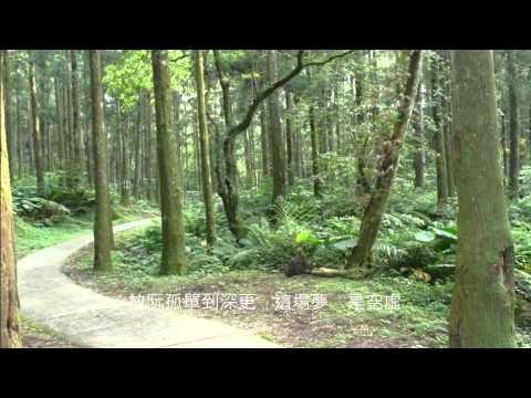 音樂磁場-返來阮身邊 + 歌詞 - 北橫東眼山. Taiwan