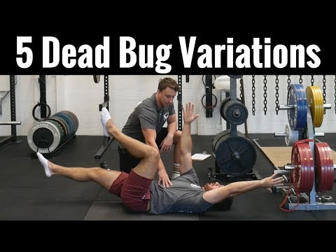 5 Best Dead Bug Variations | Core Progressions and Regressions