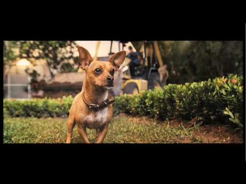 Beverly Hills Chihuahua trailers