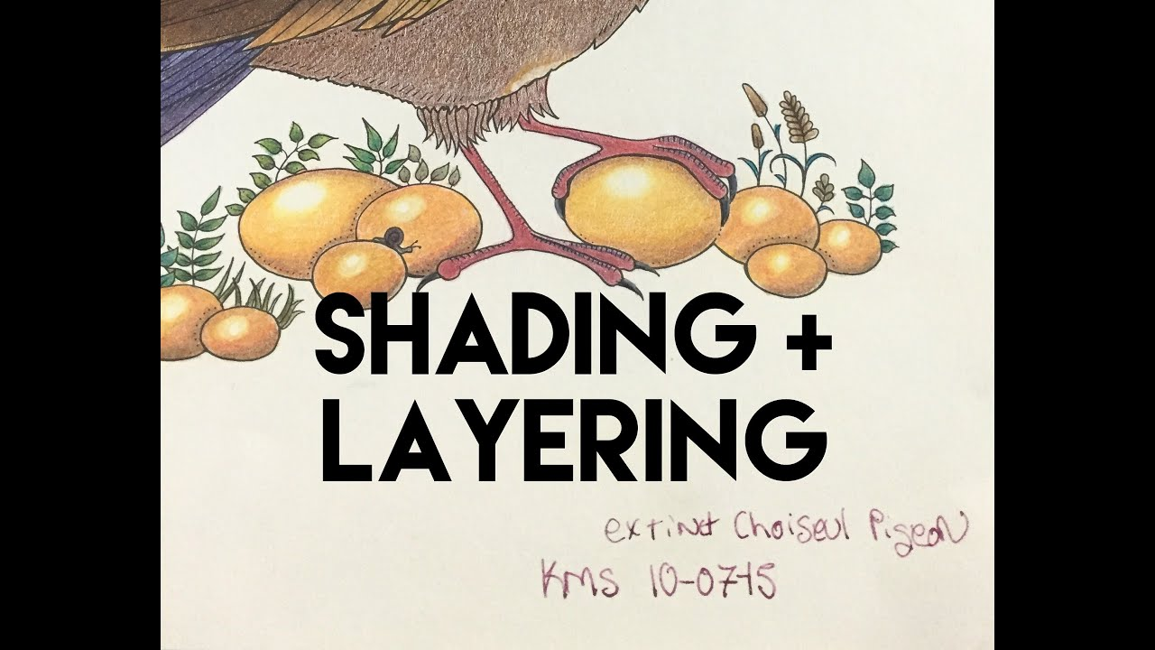 How to shade using colored pencils for adult coloring books