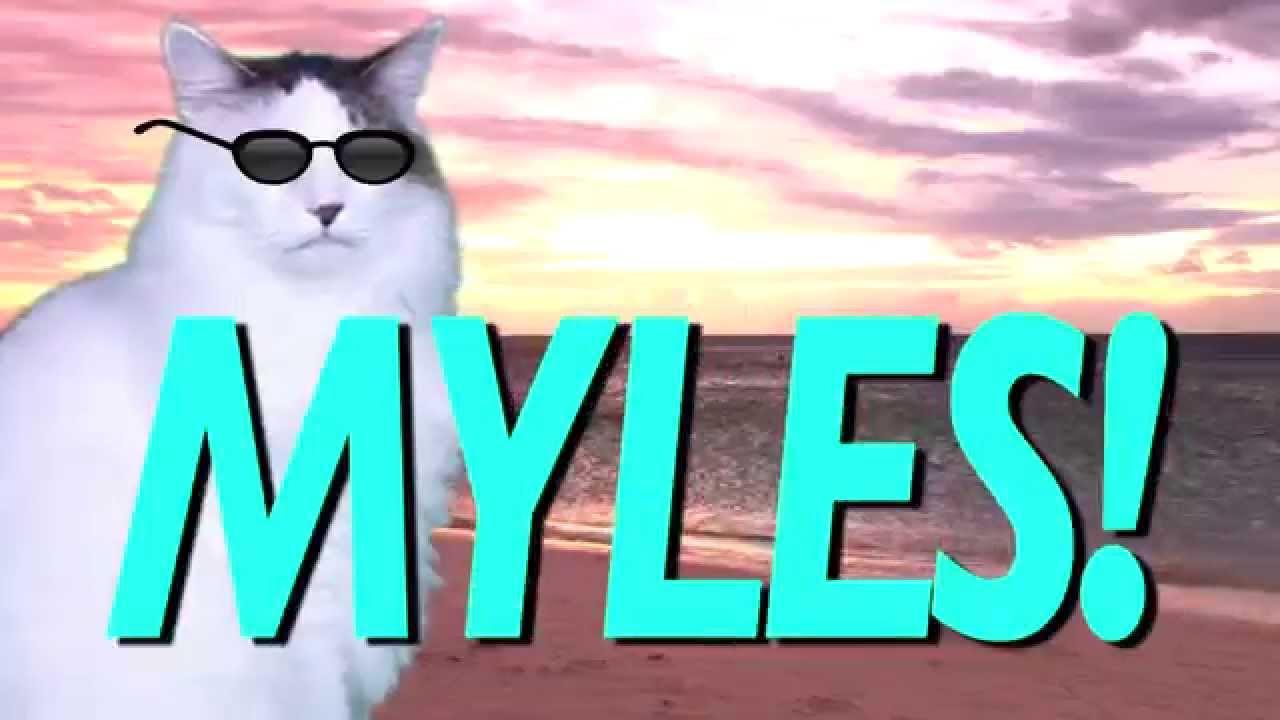 HAPPY BIRTHDAY MYLES EPIC CAT Happy Birthday Song YouTube