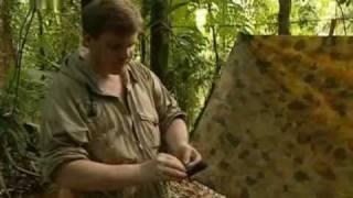 Survival - Kampf ums Ueberleben - S01E01 - Costa Rica  (1/2)