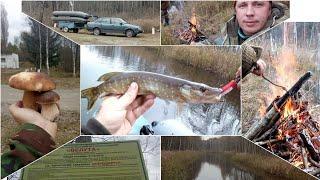 Рыбалка Троллинг Костёр Грибы Водохранилище Велута Отдых