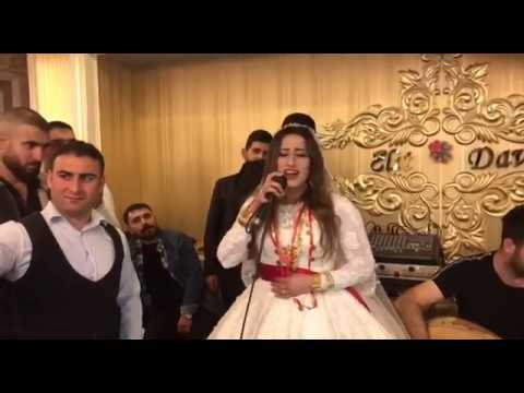 Zilan Şervan Siirt Aşiret Düğünü Mükemmel Çoşku ( Canlı Performans )