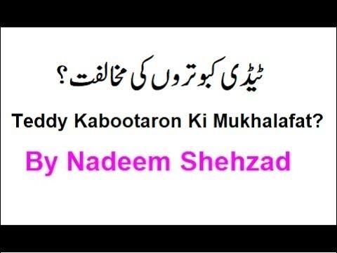 Teddy Kabootaron Ki Mukhalfat? By Nadeem Shehzad