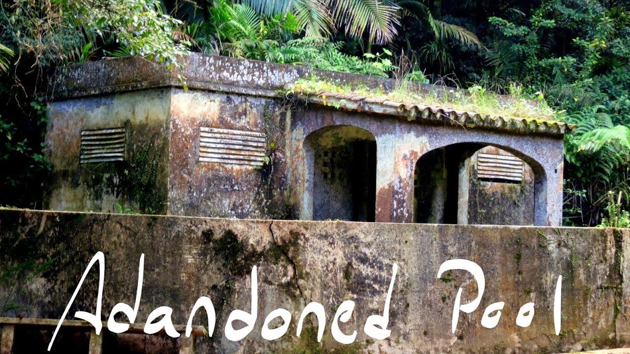 Abandoned swimming pool in the el yunque rainforest ba o for Bano de oro el yunque