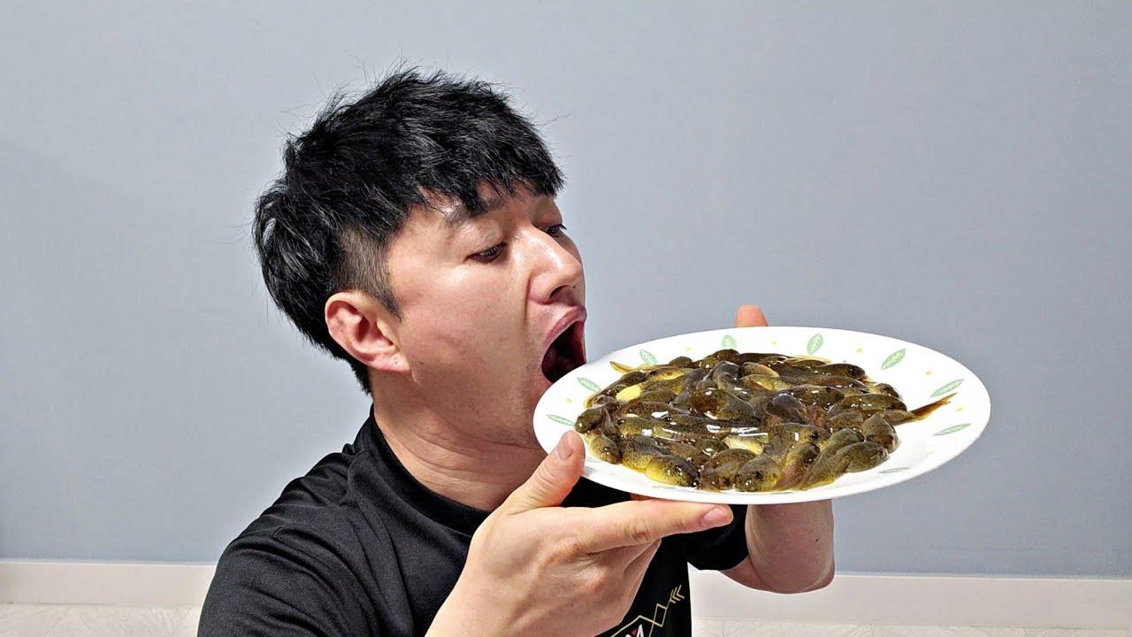 생태계를 파괴하는 황소개구리 올챙이를 잡아 먹어보자!!