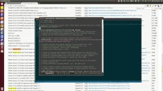 Vagrant: Ubuntu 12.04 guest wi…
