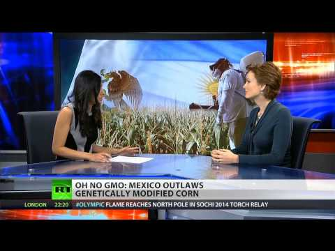 Monsanto denies link between GMOs and cancer, birth defects in Argentina