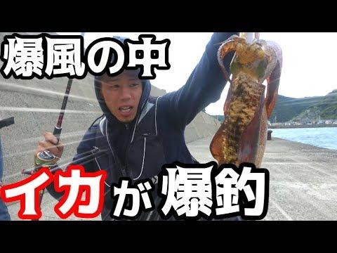 秋イカを求めて爆風の中エギングに挑戦!