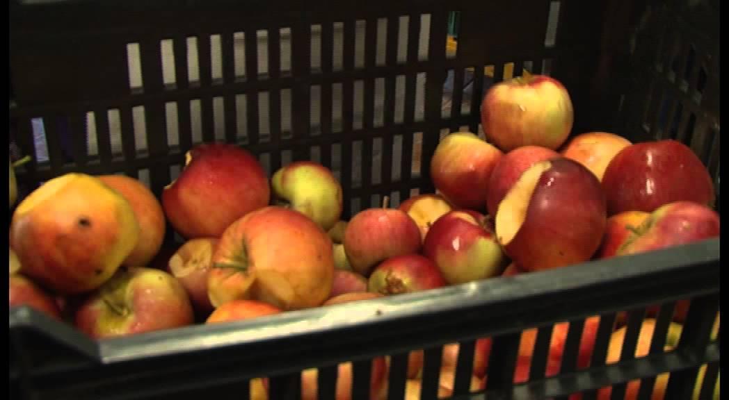 férgekből származó gyümölcslevek