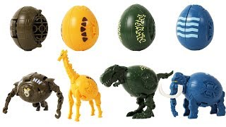 Dinosaurs and Animals Transforming Egg Toys for Kids- T-Rex,Mammoth,Gibbons,Giraffe,Cat