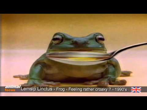 Lemsip Linctus and Expectorant - Croaky Frog - Starts crooning
