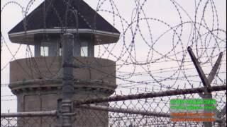 КА96-Тюрьма меня встречай