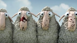 Oh Sheep!