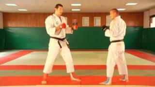 Demo de Jujitsu combat