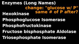 Glycolysis(3/5): Detailed Structures, Full Enzyme Names: Carbon chains and Sugar rings