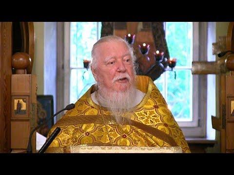 Протоиерей Димитрий Смирнов. Проповедь о море житейском и уроках Божиих